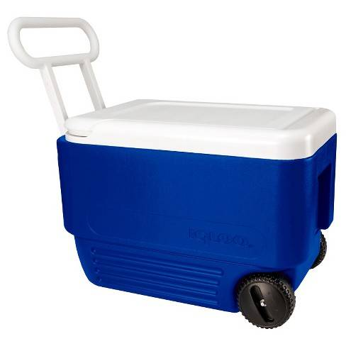Actual cooler may vary slightly.